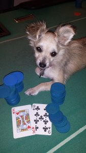 pearl playing poker